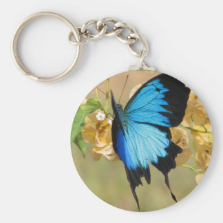 Ulysses Butterfly Basic Round Button Keychain