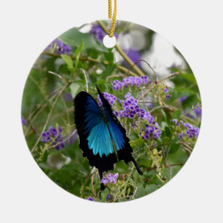 ULYSSES BUTTERFLY IN RURAL QUEENSLAND AUSTRALIA CERAMIC ORNAMENT