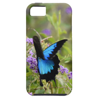ULYSSES BUTTERFLY RURAL QUEENSLAND AUSTRALIA iPhone SE/5/5s CASE