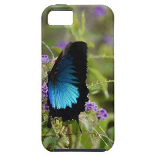 ULYSSES BUTTERFLY RURAL QUEENSLAND AUSTRALIA iPhone SE/5/5s CASE
