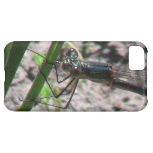 Umatilla Oregon Insects / Arachnids Bugs Fauna iPhone 5C Cases