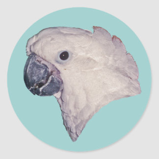 Umbrella Cockatoo Classic Round Sticker