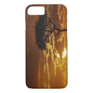 Umbrella Thorn Acacia, Acacia tortilis, iPhone 8/7 Case