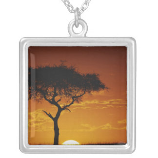 Umbrella Thorn Acacia, Acacia tortilis, Personalized Necklace