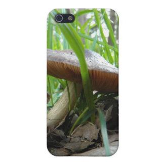 Umbrella Top iPhone SE/5/5s Case