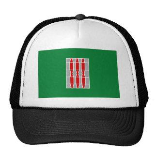 Umbria (Italy) Flag Trucker Hat