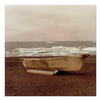 Umiak Walrus Skin Whalers Boat Photo Designed Poster