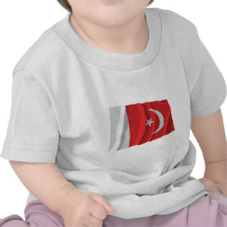 Umm bandera que agita del al-Quwain Camiseta