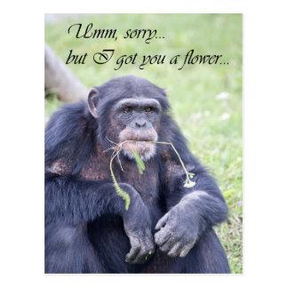 Umm sorry postcard