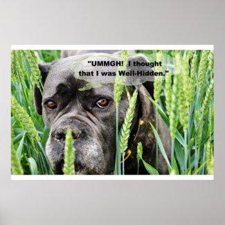 """UMMGH! I Thought I Was Well-Hidden."", Dog"