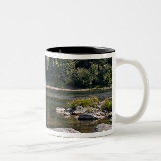 Umpqua River, Oregon Two-Tone Coffee Mug