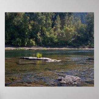 Umpqua River Summer Poster
