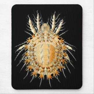 Un ácaro mousepad
