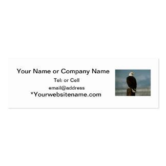 un águila calva americana en un polo tarjetas de visita mini