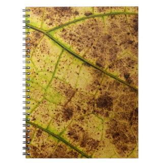 Un amarillo y una imagen terrosos de la macro de libro de apuntes