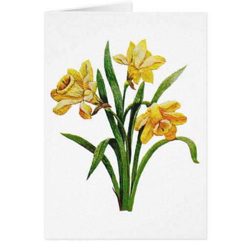Un anfitrión de oro de narcisos bordados tarjeta de felicitación