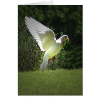 Un ángel tarjeta de felicitación