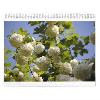 un año de flores calendario