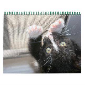 Un año de gatitos calendarios de pared