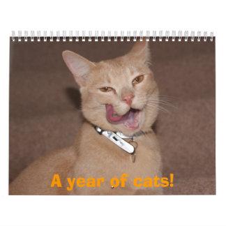 ¡Un año de gatos! Calendario
