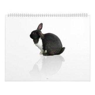 Un año de Rupert Calendario De Pared
