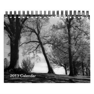 Un año en fotografía blanco y negro calendario de pared