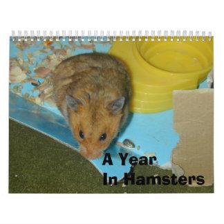 Un año en los hámsteres 2010 calendarios de pared
