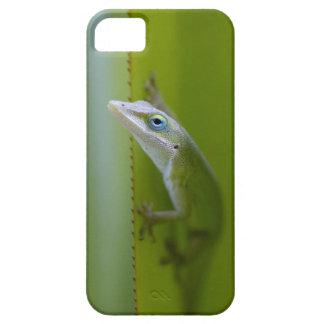 Un anole verde es un lagarto arbóreo iPhone 5 funda