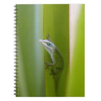 Un anole verde es un lagarto arbóreo libro de apuntes con espiral