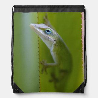 Un anole verde es un lagarto arbóreo mochilas