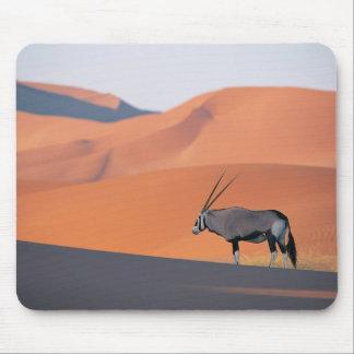 Un antílope solitario del oryx alfombrilla de raton