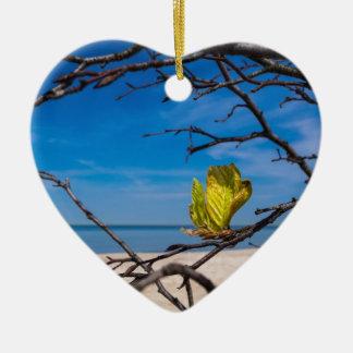 Un árbol caido en la costa de mar Báltico Adorno De Cerámica En Forma De Corazón