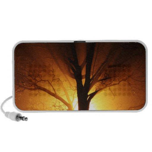 Un árbol desnudo en la puesta del sol iPhone altavoz