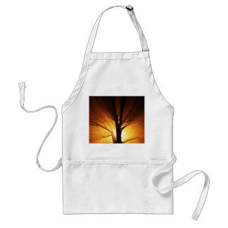 Un árbol desnudo en la puesta del sol delantal