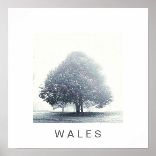 Un árbol en niebla póster
