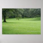Un árbol en un campo del verde impresiones
