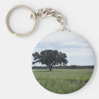 Un árbol llaveros personalizados