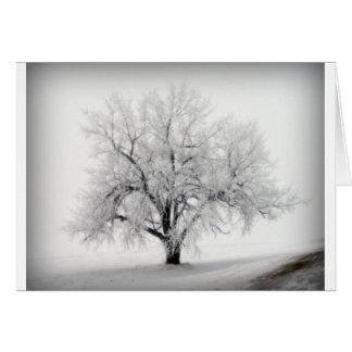 Un árbol solitario de Frostry en la pradera de Dak Tarjeta De Felicitación
