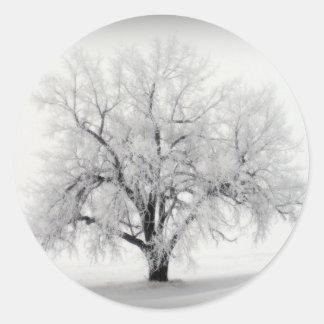 Un árbol solitario de Frostry en la pradera de Pegatina Redonda