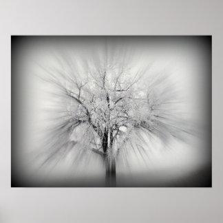 Un árbol solitario en la pradera del ND Impresiones