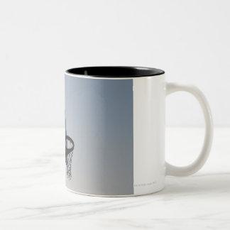 Un aro y una red del tablero trasero de taza de dos tonos