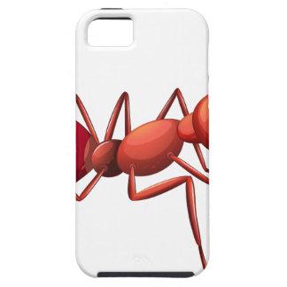 Un arrastre grande de la hormiga iPhone 5 funda