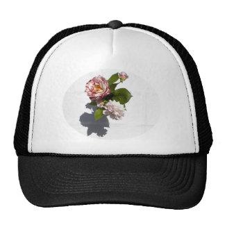 Un arreglo de rosas gorras de camionero