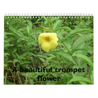 Un arsenal mezmoring de flores hermosas calendario