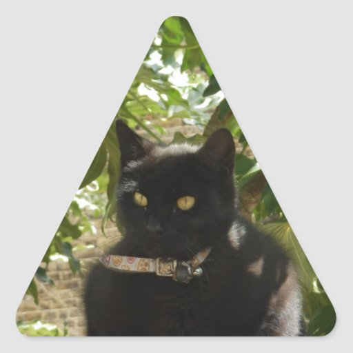 Un ascendente más seguro aquí pegatina triangular