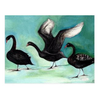 Un ballet de los cisnes negros 2013 tarjeta postal