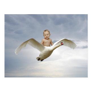 Un bebé y el cielo del cisne tarjetas postales