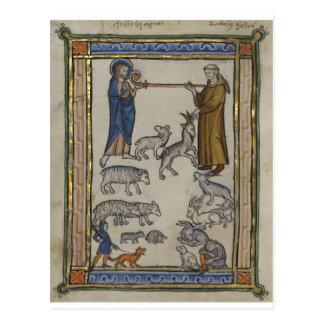 Un bestiario medieval tarjetas postales