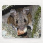 Un bocado real alfombrillas de raton