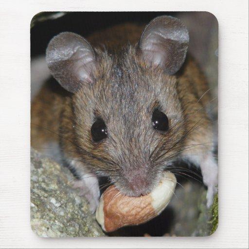 Un bocado real tapetes de raton